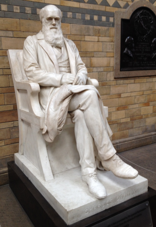Charles Darwin statue, Natural History Museum