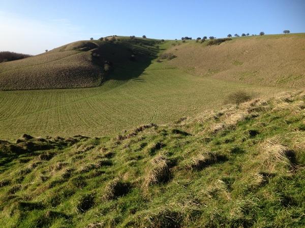 Draycott Hill near Oare, Wiltshire
