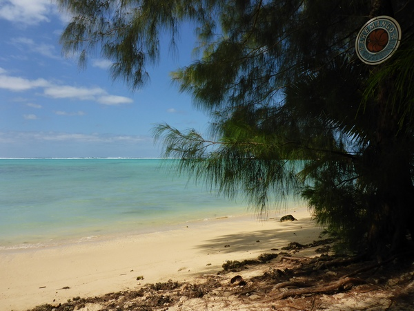 The beach at Aremango guesthouse in Rarotonga, looking out into the lagoon