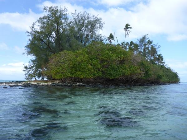 Taaoka motu, Rarotonga