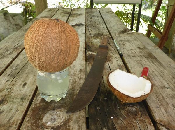 Draining coconut milk